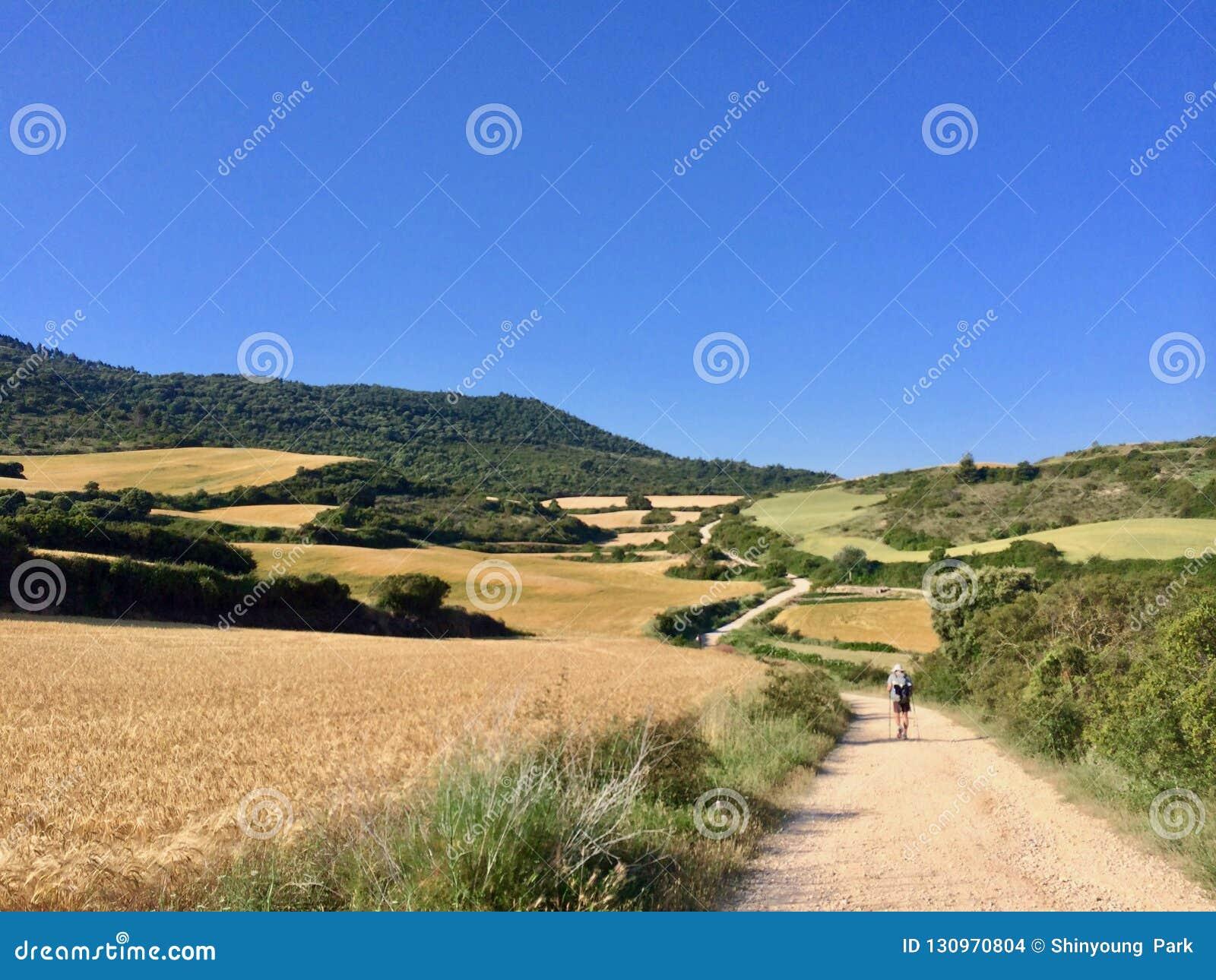 Ett ensamt vallfärdar på Caminoen de Santiagoe, väg av Sankt driftstopp