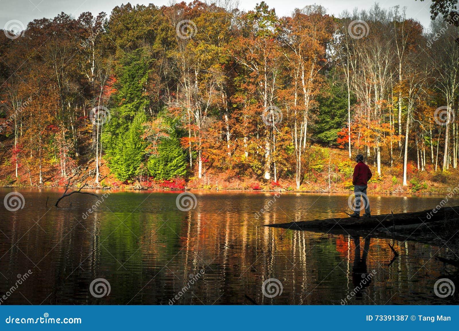 Ett ensligt ögonblick på Rose Lake på Hocking kullar i nedgången