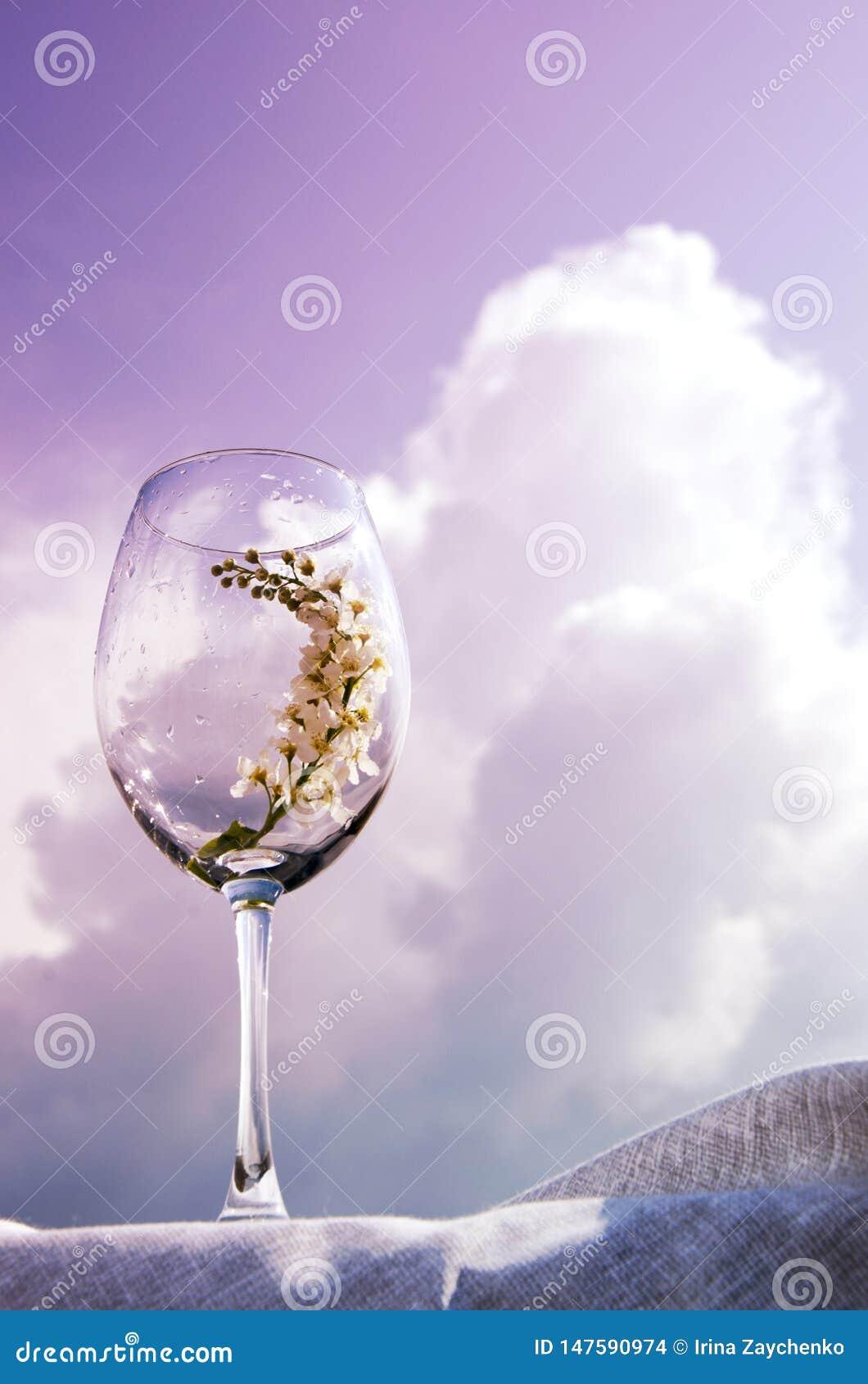 Ett exponeringsglas med en kvist av h?ggst?llningar p? en textilservett p? banken av floden under solen Korallsignal