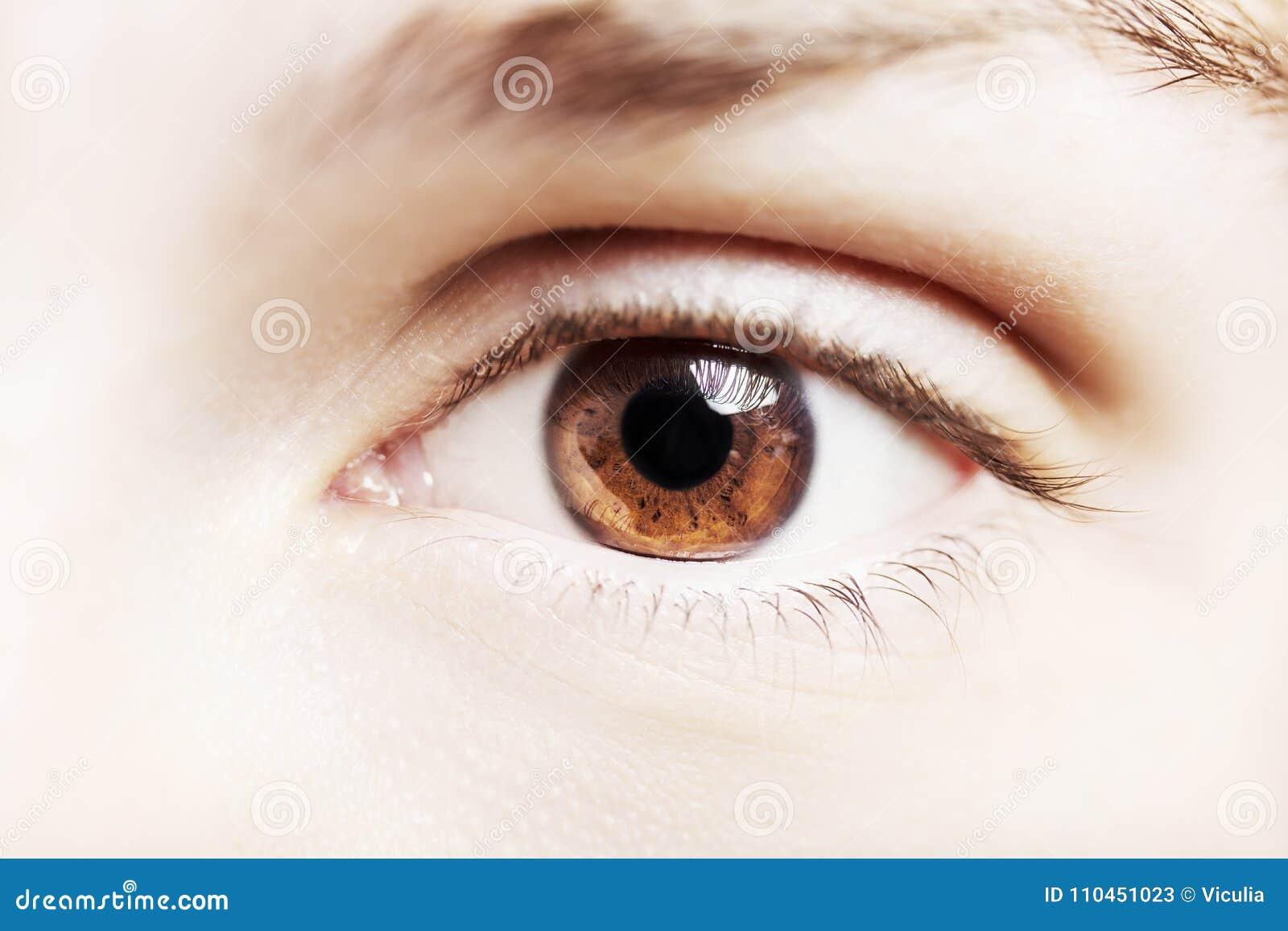 Ett härligt insiktsfullt öga för blickman` s Slut som skjutas upp