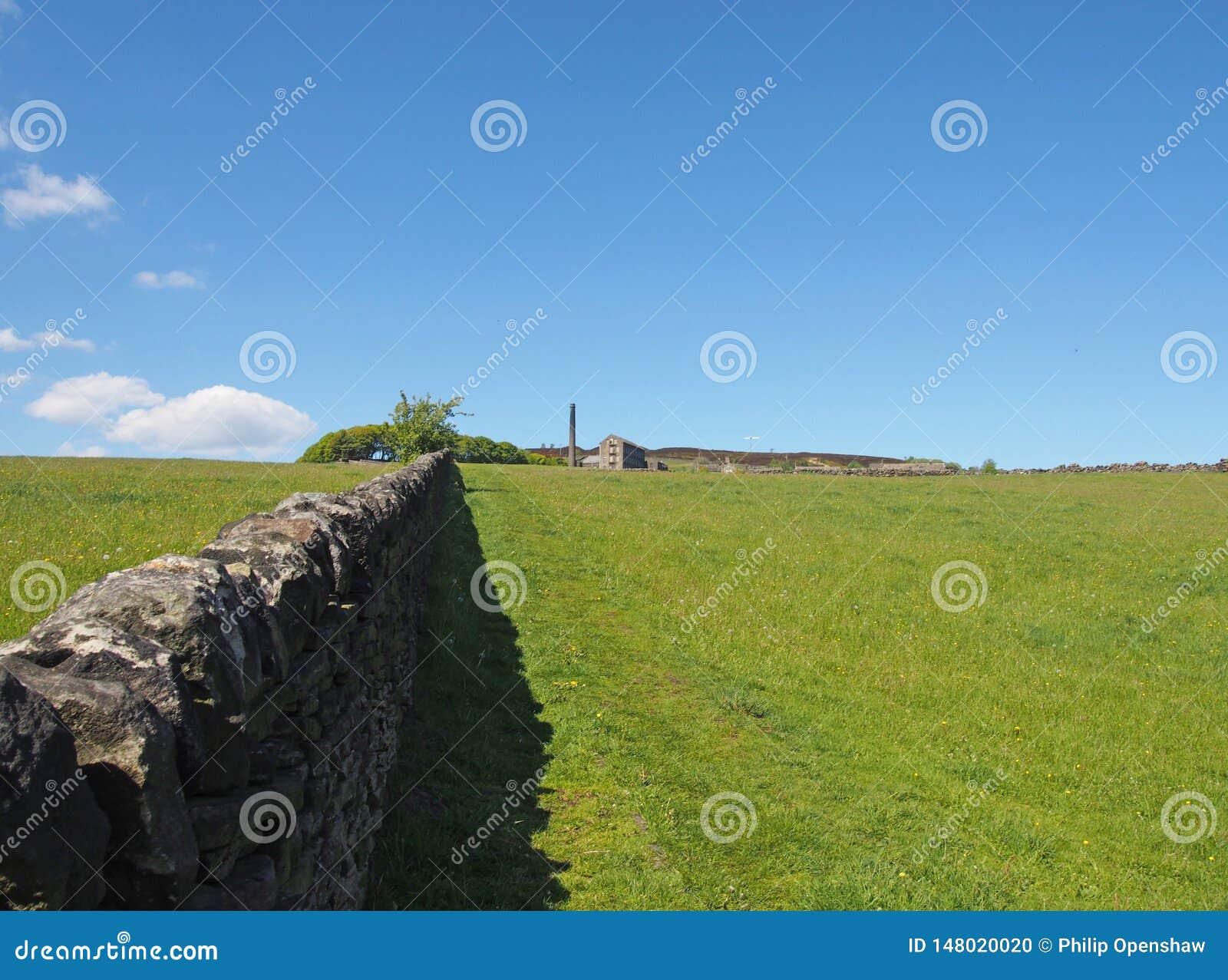 Ett långt stenar väggen i perspektivet som gränsar en äng för grönt gräs i ljust vårsolljus med övergett ett historiskt, maler oc