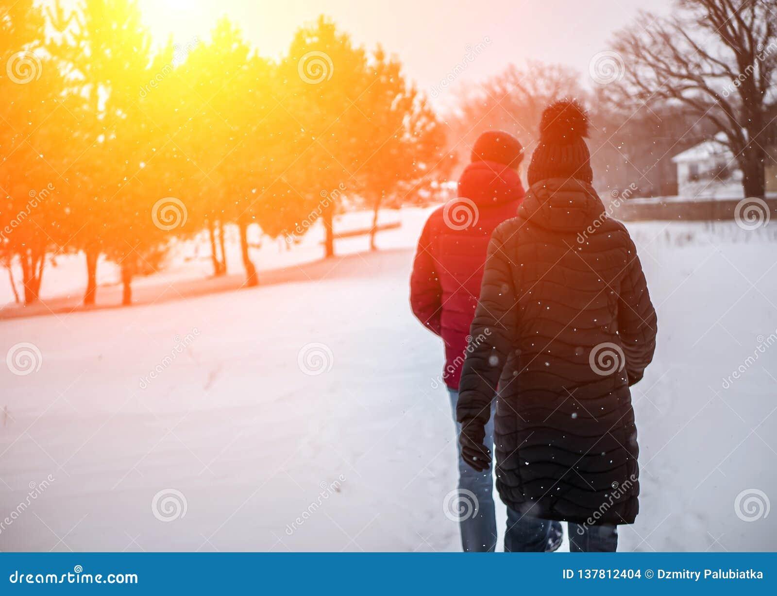 Ett par av folk går i vintern parkerar