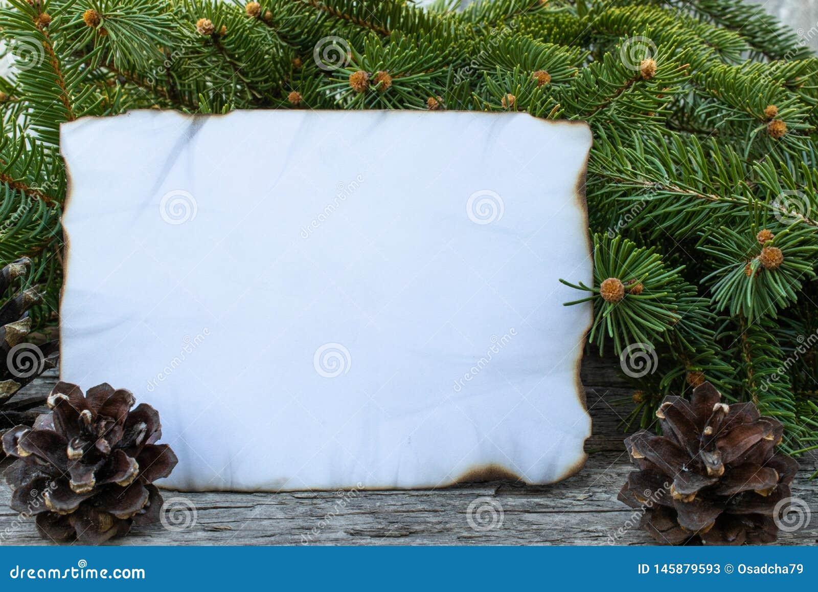 Ett vitt ark av papper som br?nns l?ngs kanterna och de gr?na filialerna av en julgran p? bakgrunden av gamla tr?br?den