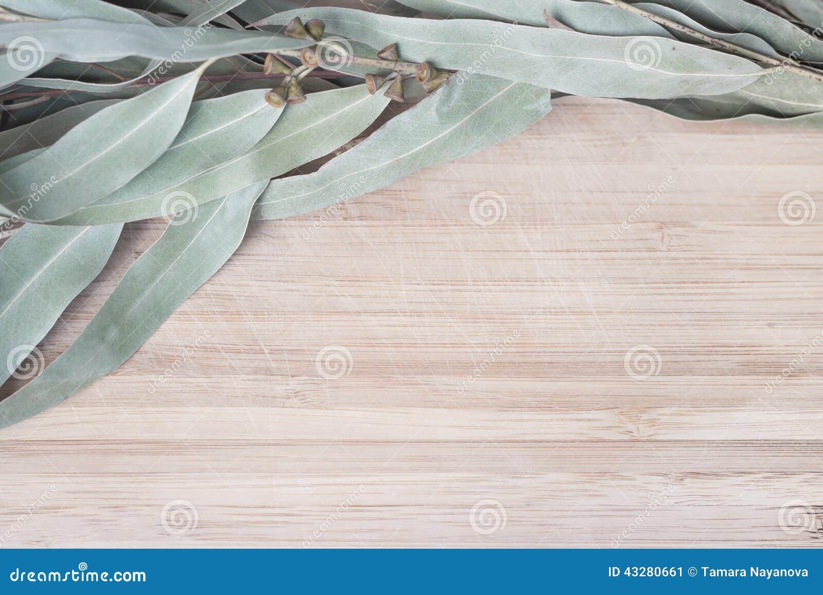 Eucalyptustakje op een houten lijst