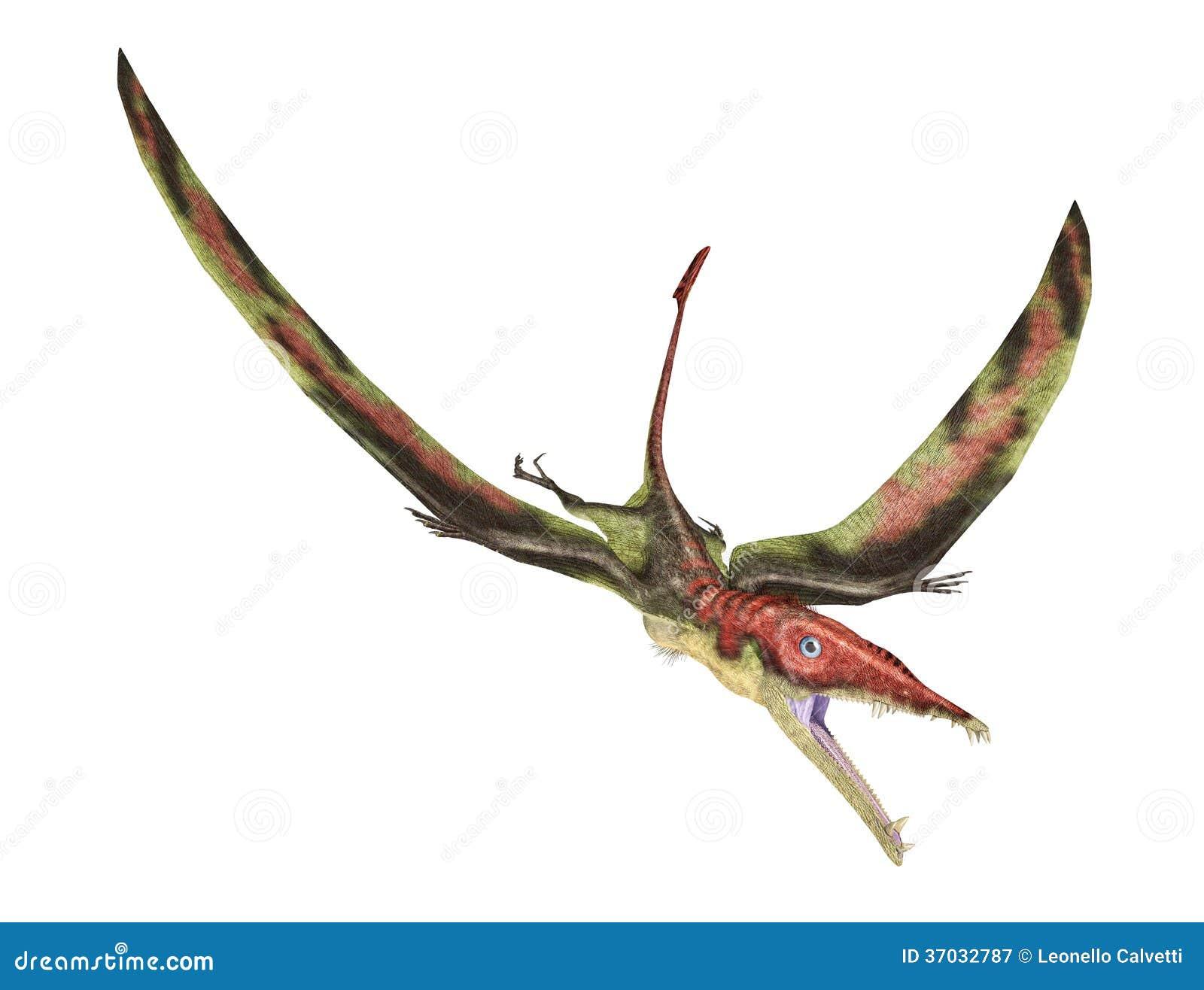 Eudimorphodon die voorhistorische reptiel, photorealistic represe vliegen