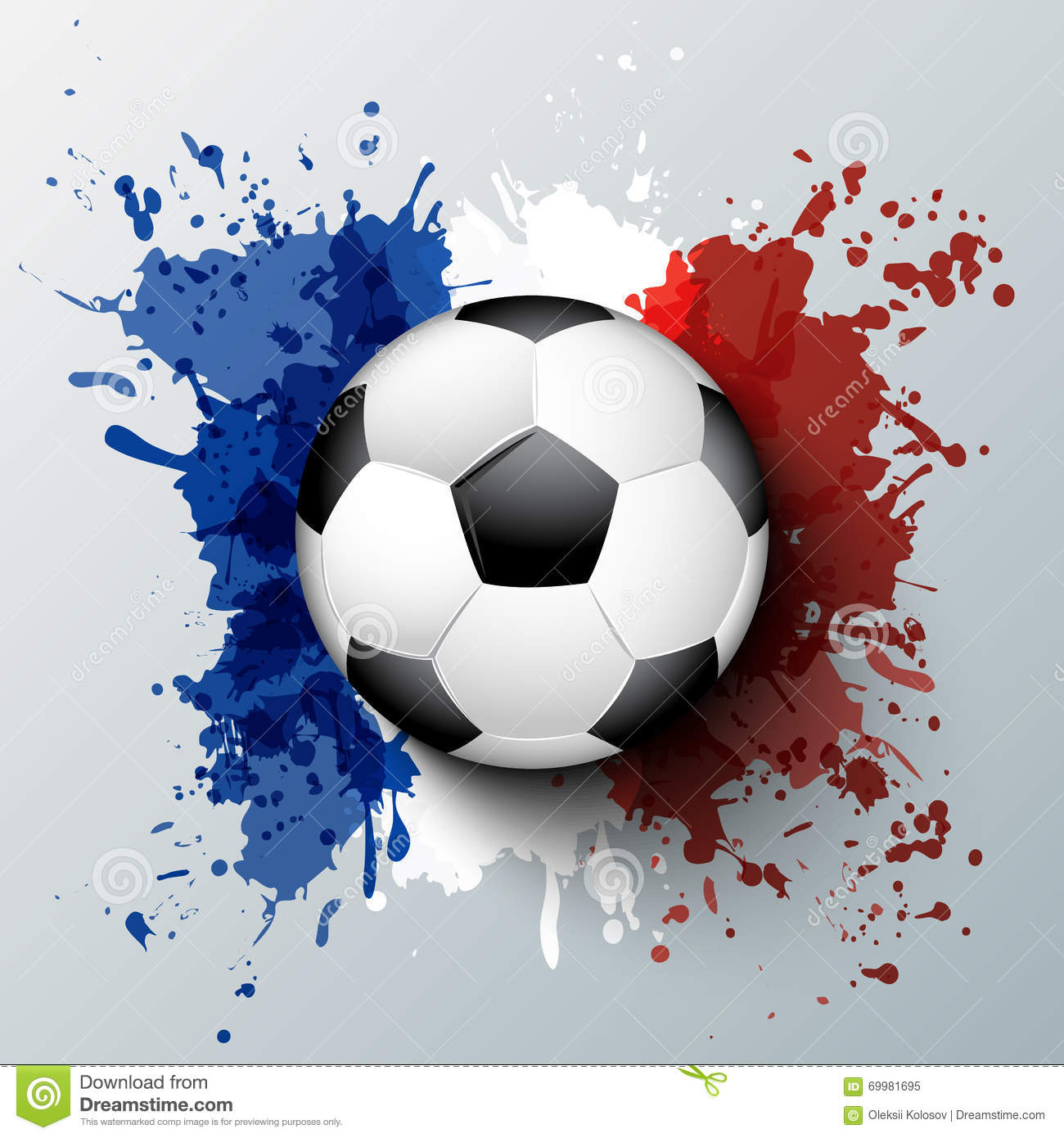 France Football Fan Look At Game Of France National