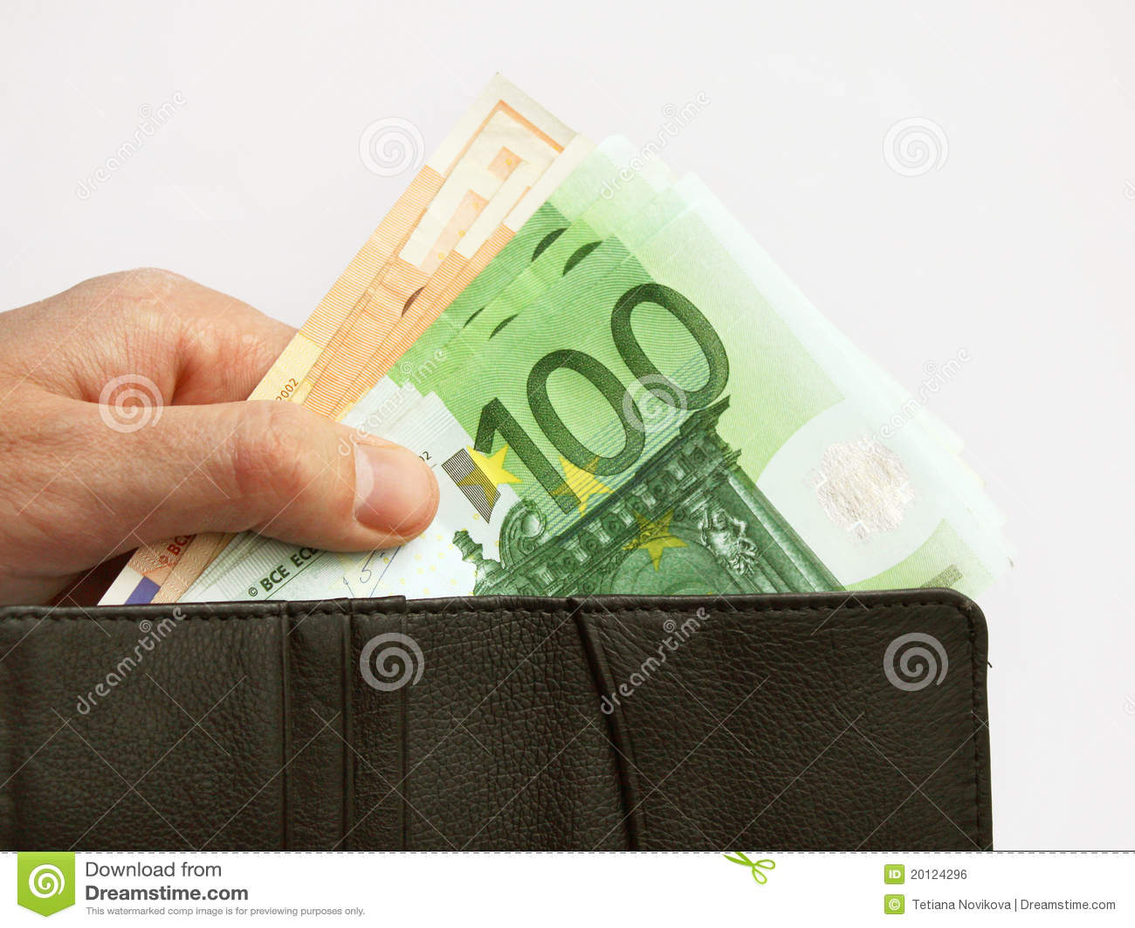 Euro money and purse
