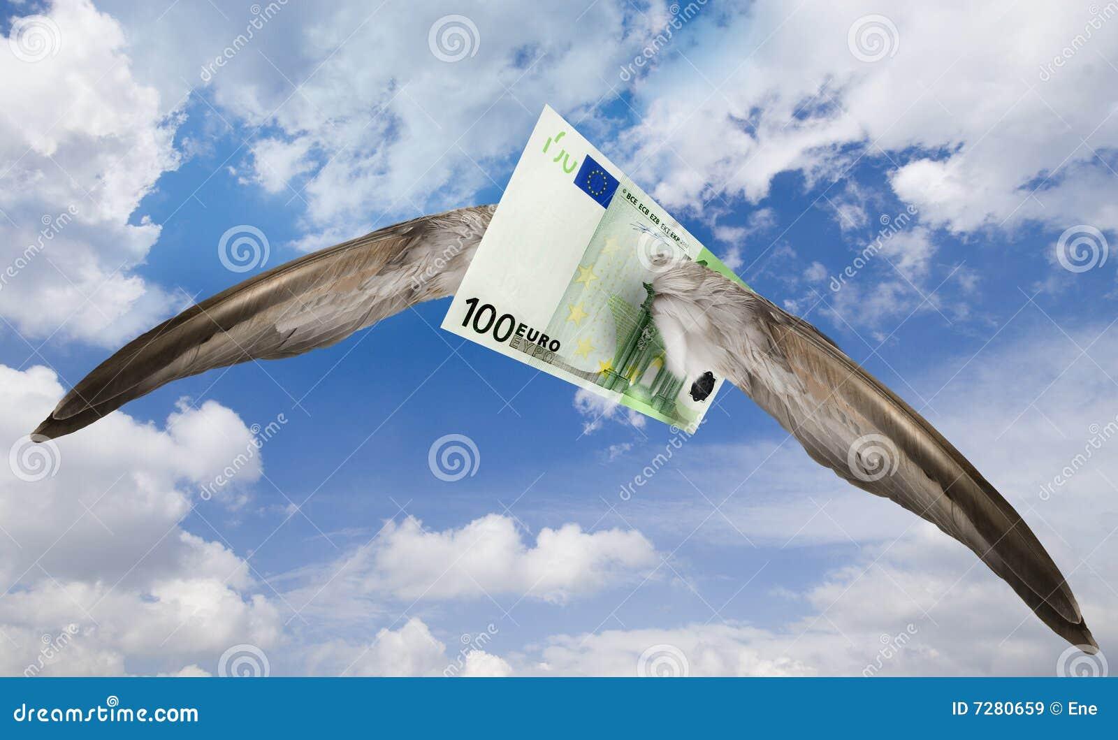 Euro parti volant