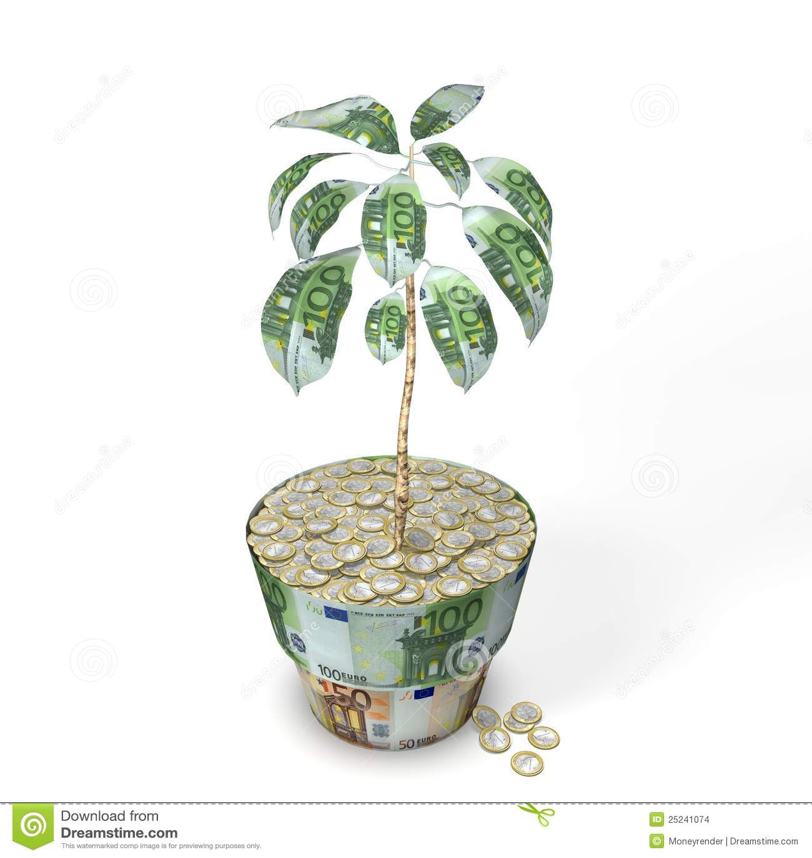 Euro pianta dell'albero dei soldi con le euro monete