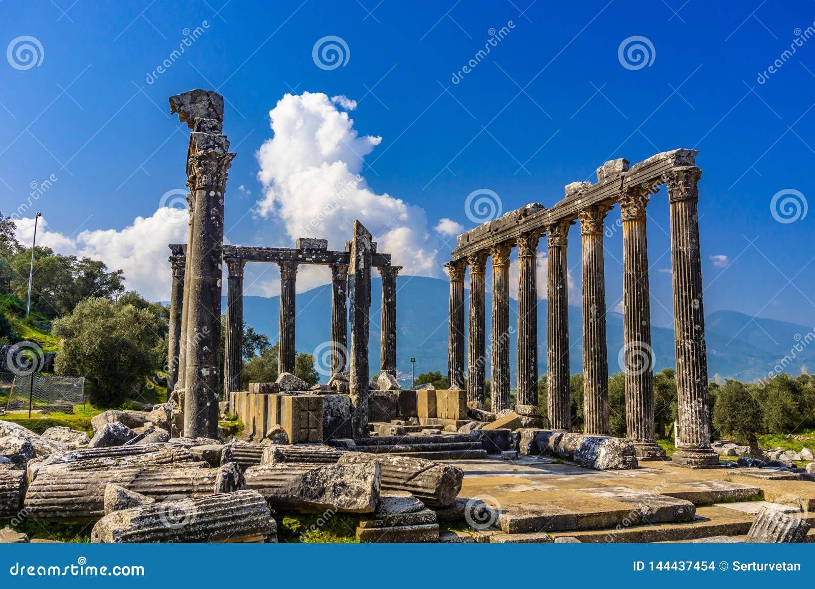 Euromos Euromus Antyczny miasto Soke, Milas droga -, Mugla, Turcja Świątynia Zeus Lepsynos budował w 2nd wieku