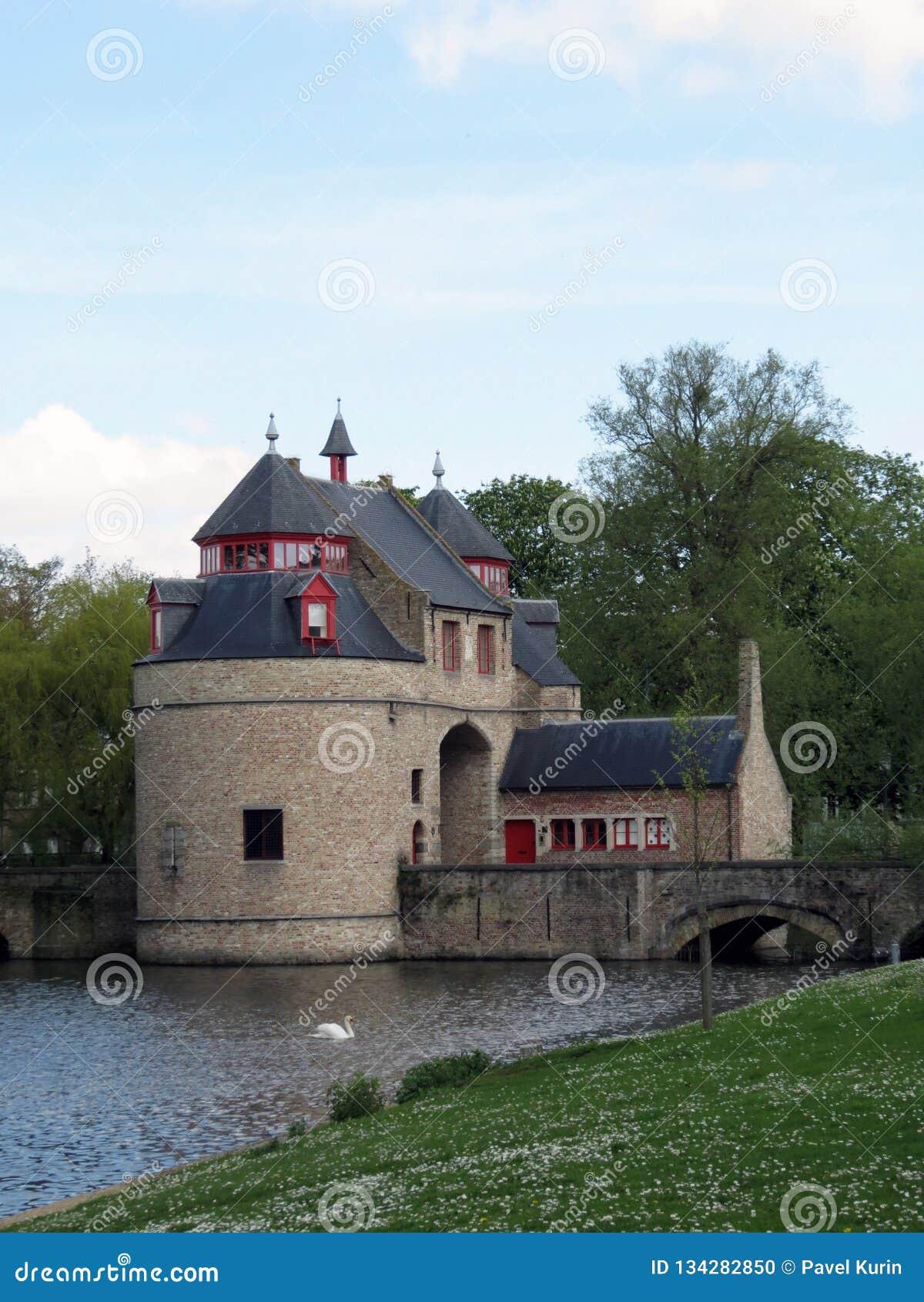 Europa, België, West-Vlaanderen, Brugge, de oude wachttoren en een drijvende Zwaan