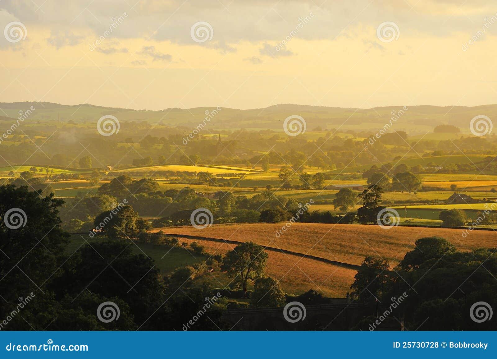 Evening light, North Yorkshire fields