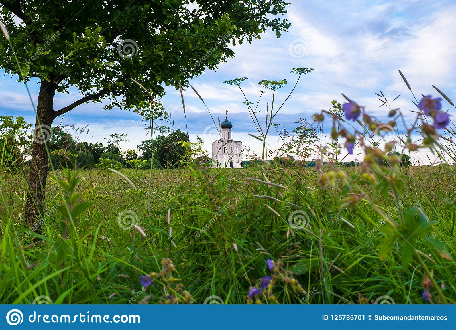 Evening view through Bogolubovo meadow towards the Church of the Intercession of the Holy Virgin on the Nerl River.