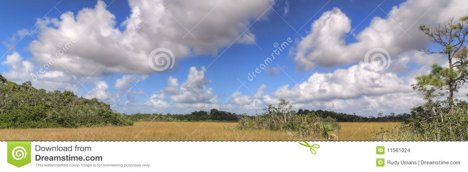Everglades πανόραμα τοπίων
