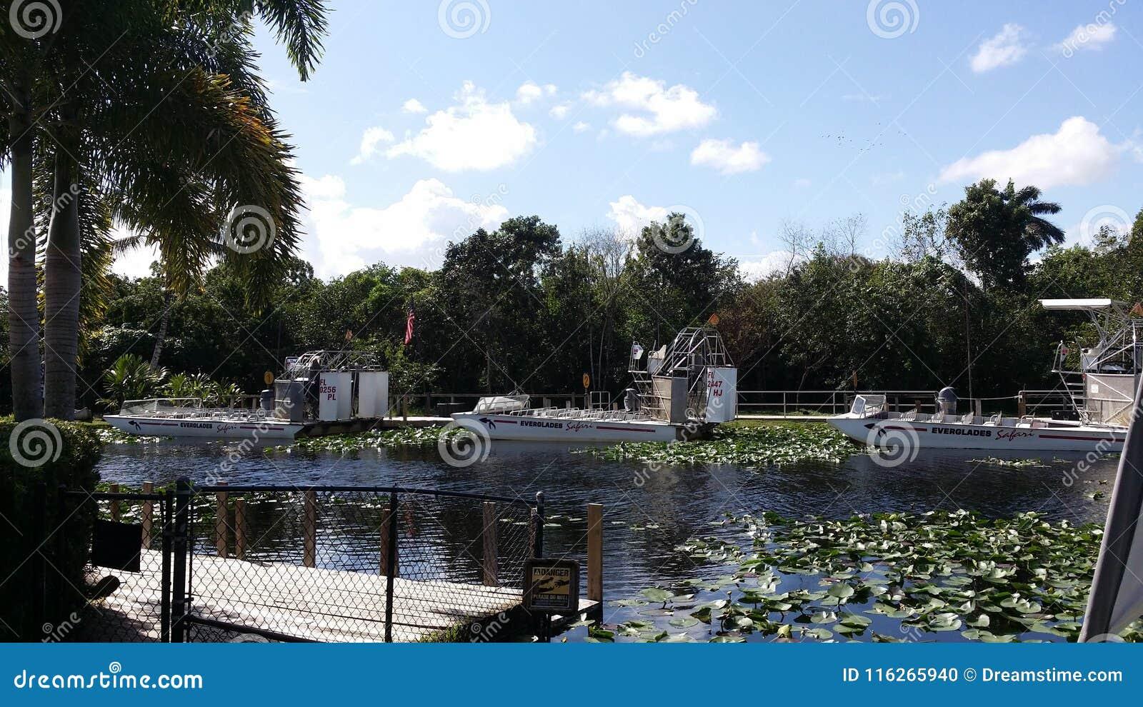 Everglades National Park Miami Florida Editorial Image