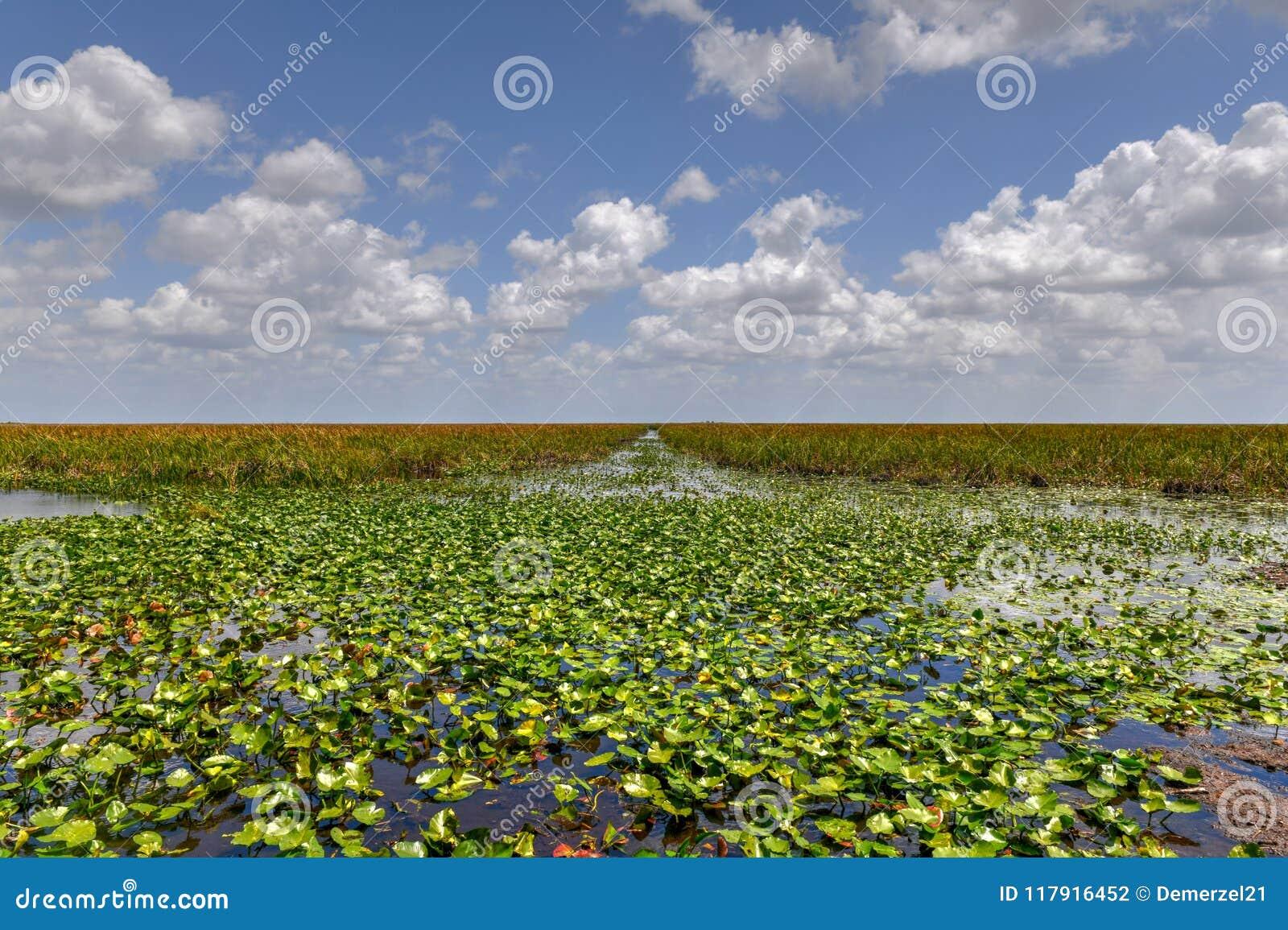 Everglades-Nationalpark - Florida