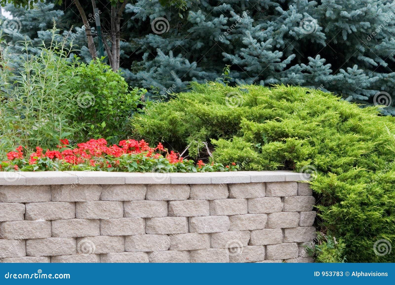 Evergreen Landscape Design Stock Photos Image 953783