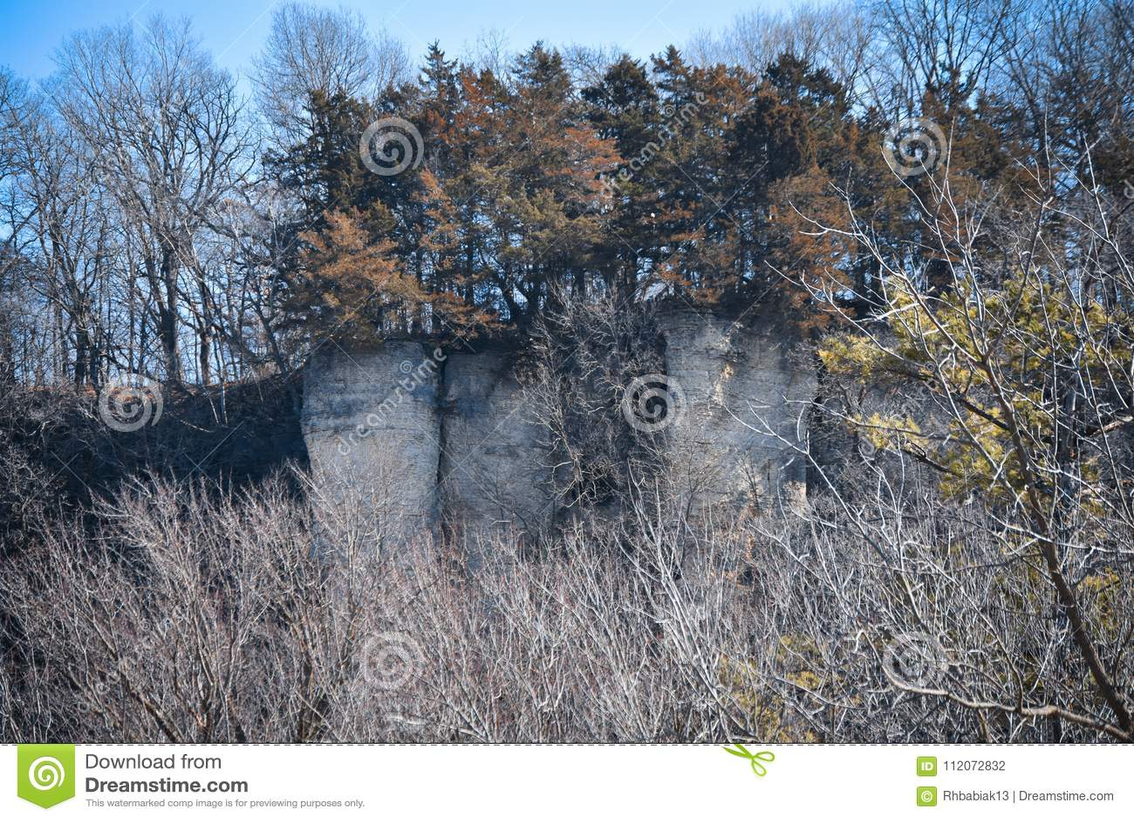 Evergreens On Top Of Cliff In Decorah, Iowa Stock Photo