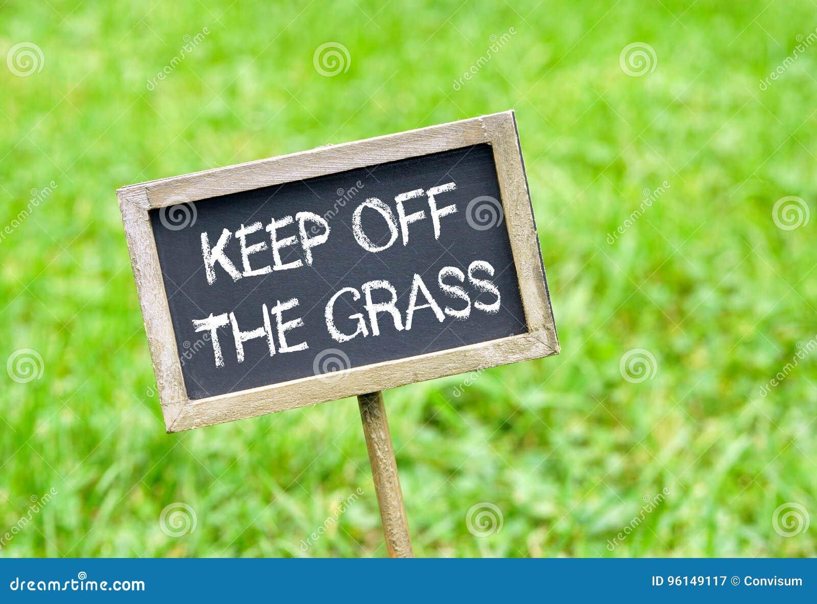 Evite la hierba - pizarra en fondo de la hierba