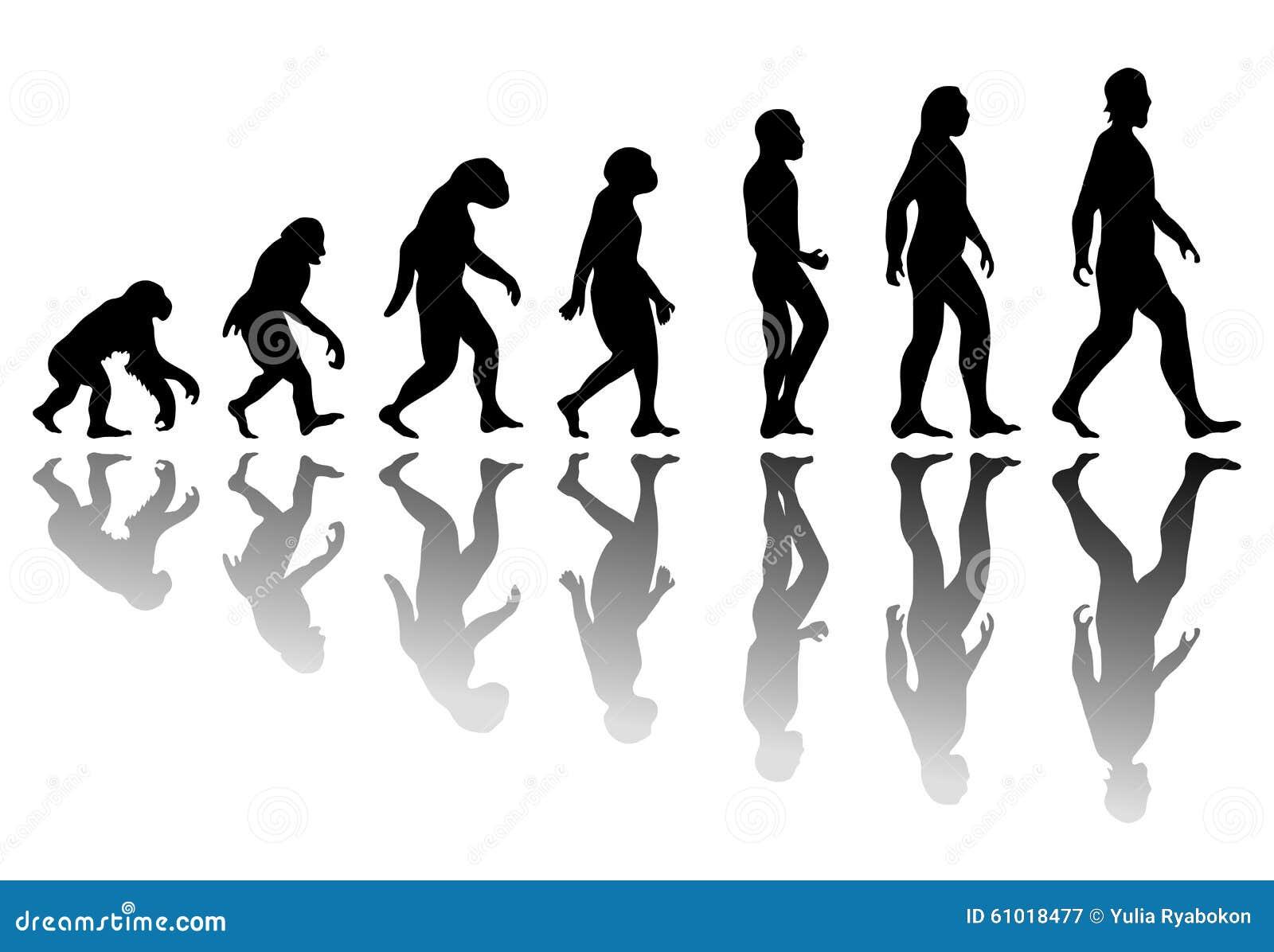 Evoluzione dell 39 uomo della siluetta illustrazione for Planimetrie della caverna dell uomo