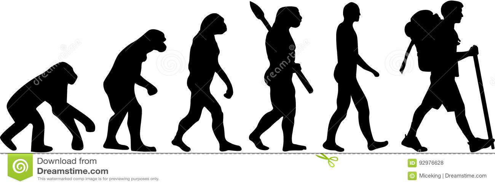 Ewolucja wycieczkowicz