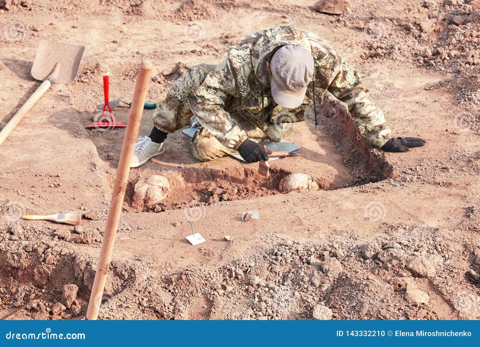 Excavación arqueológica La investigación que conduce sobre los huesos humanos, pieza del arqueólogo del esqueleto de la tierra, c