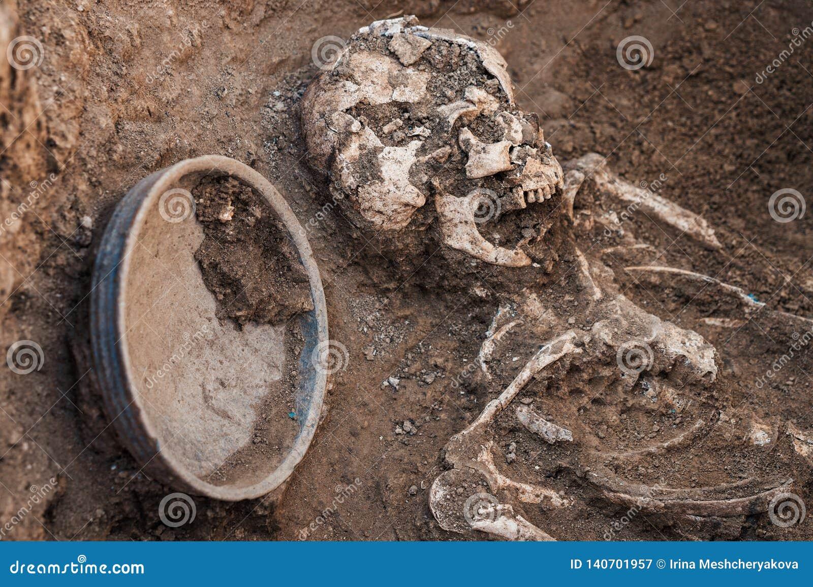 Excavaciones arqueol?gicas investigaci?n sobre el entierro humano, esqueleto, cr?neo, inventario