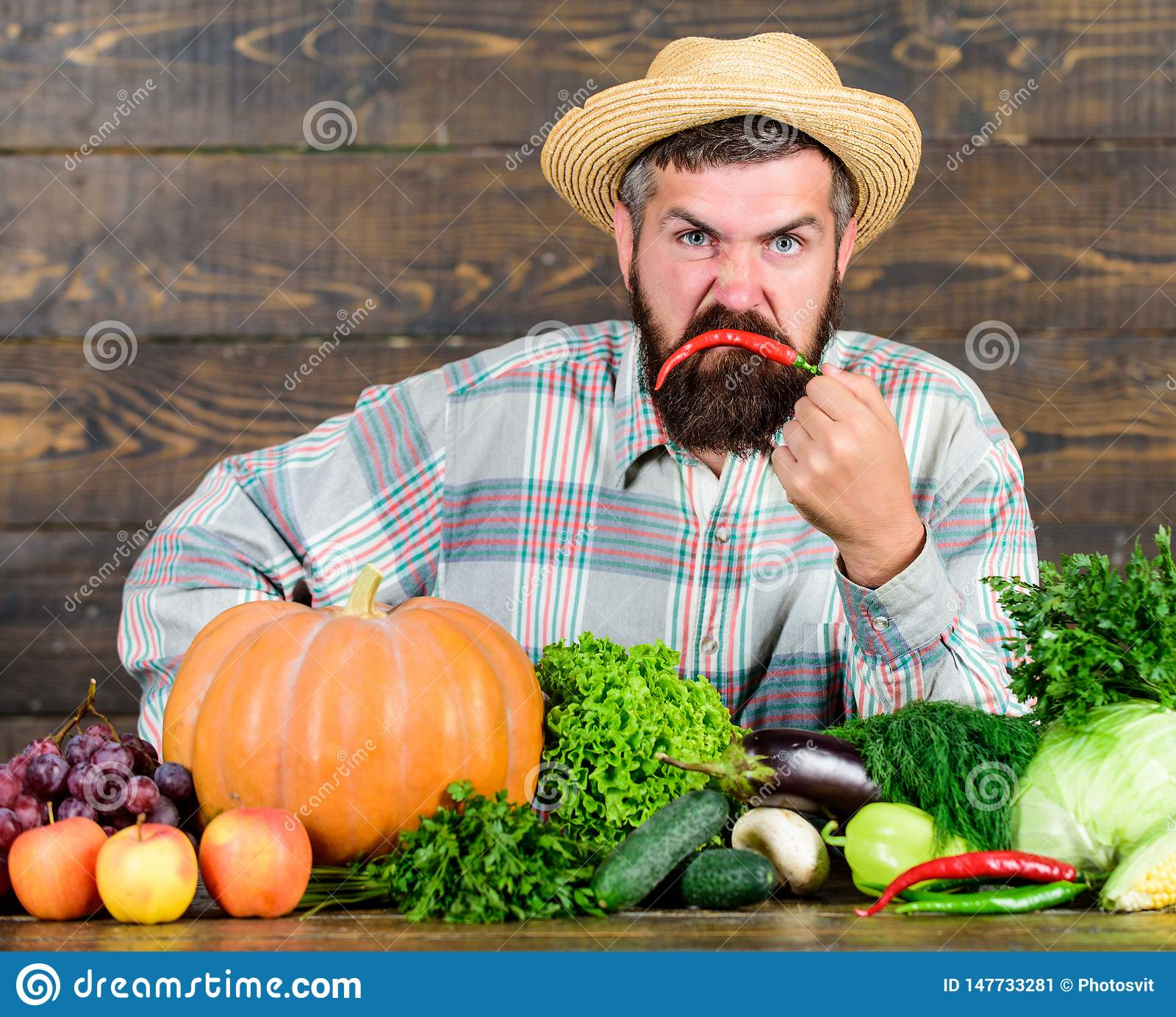 Excellent quality vegetables. Man with beard proud of his harvest vegetables wooden background. Farmer with organic