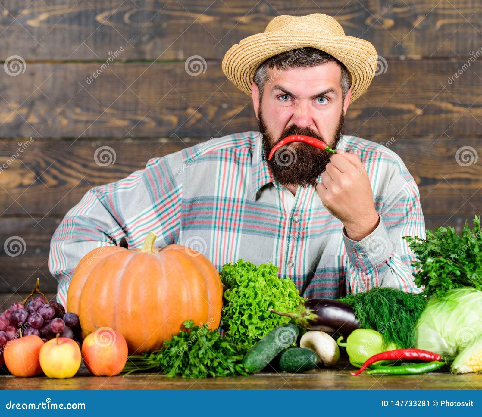 Excellents l?gumes de qualit? Homme avec la barbe fi?re de son fond en bois de l?gumes de r?colte Agriculteur avec organique
