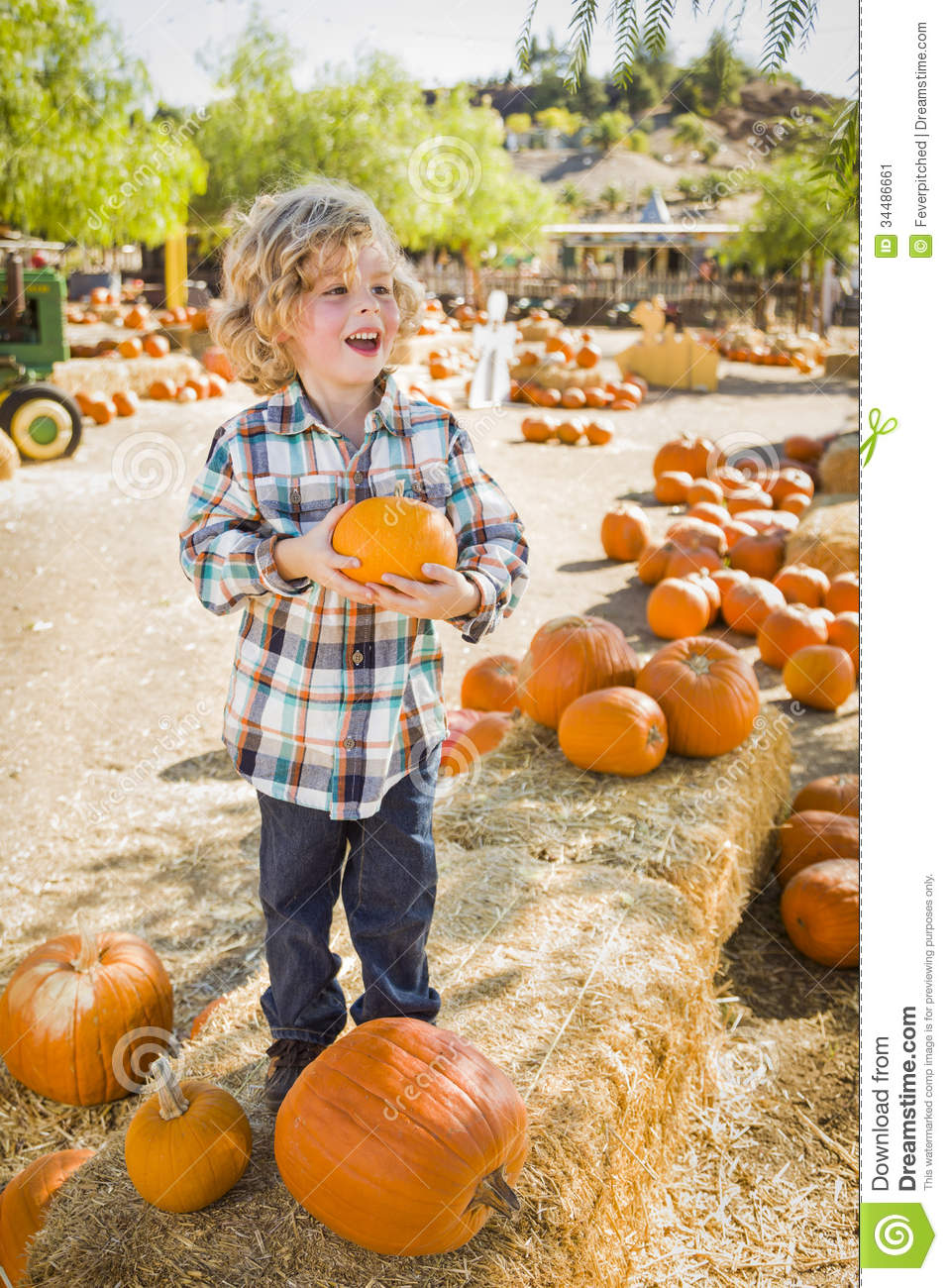 Excited Boy Holding His Pumpkin at a Pumpkin Patch