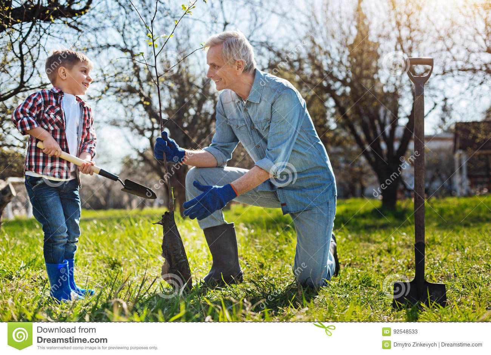 excited senior gardener and kid setting tree in garden stock photo