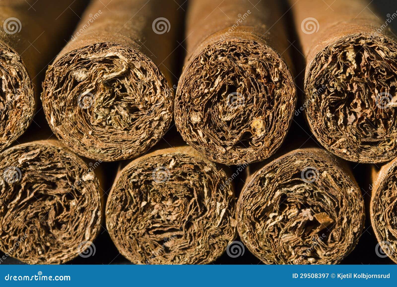 Exclusieve Sigaren