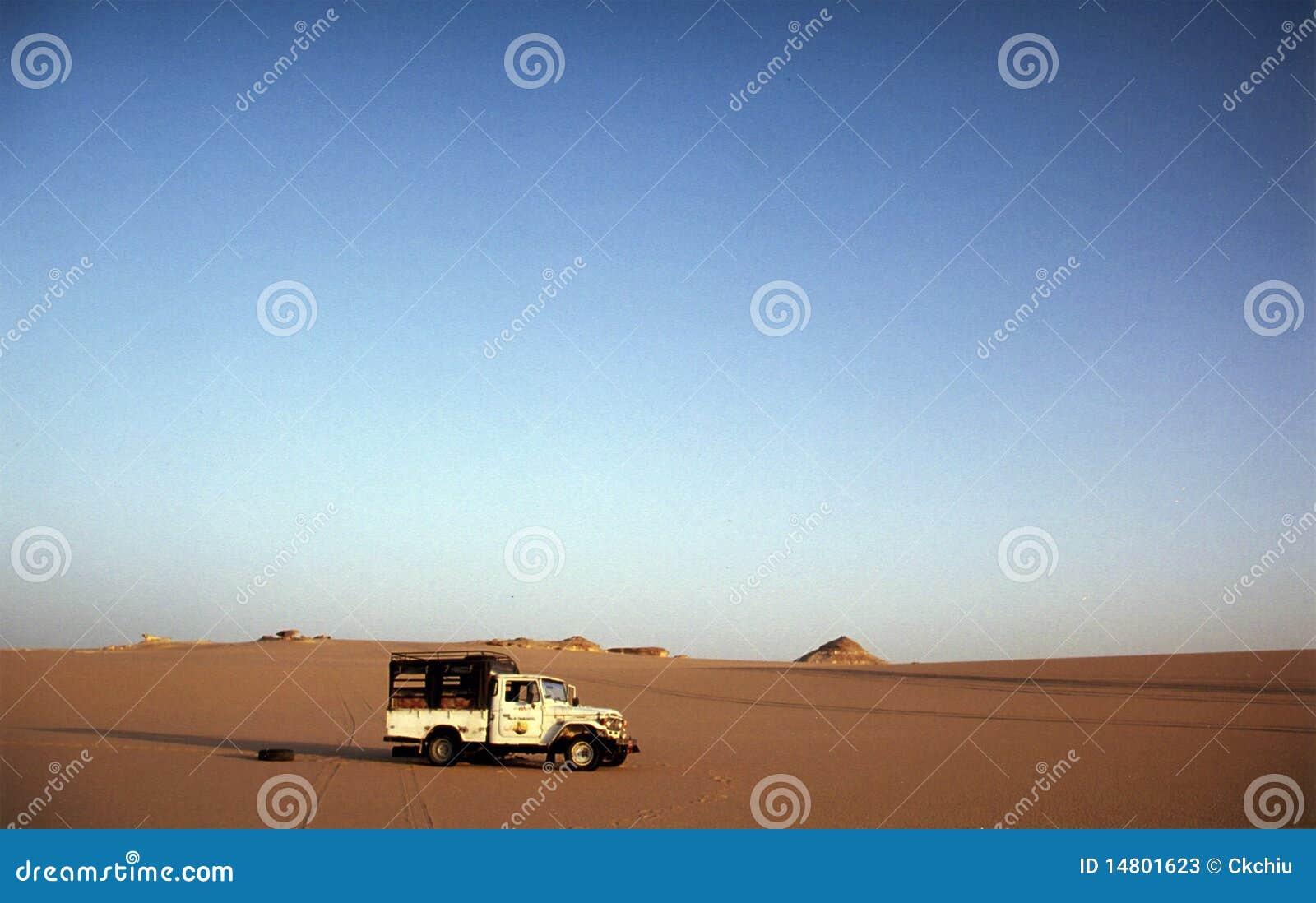 Excursão do deserto de Wester de Egipto