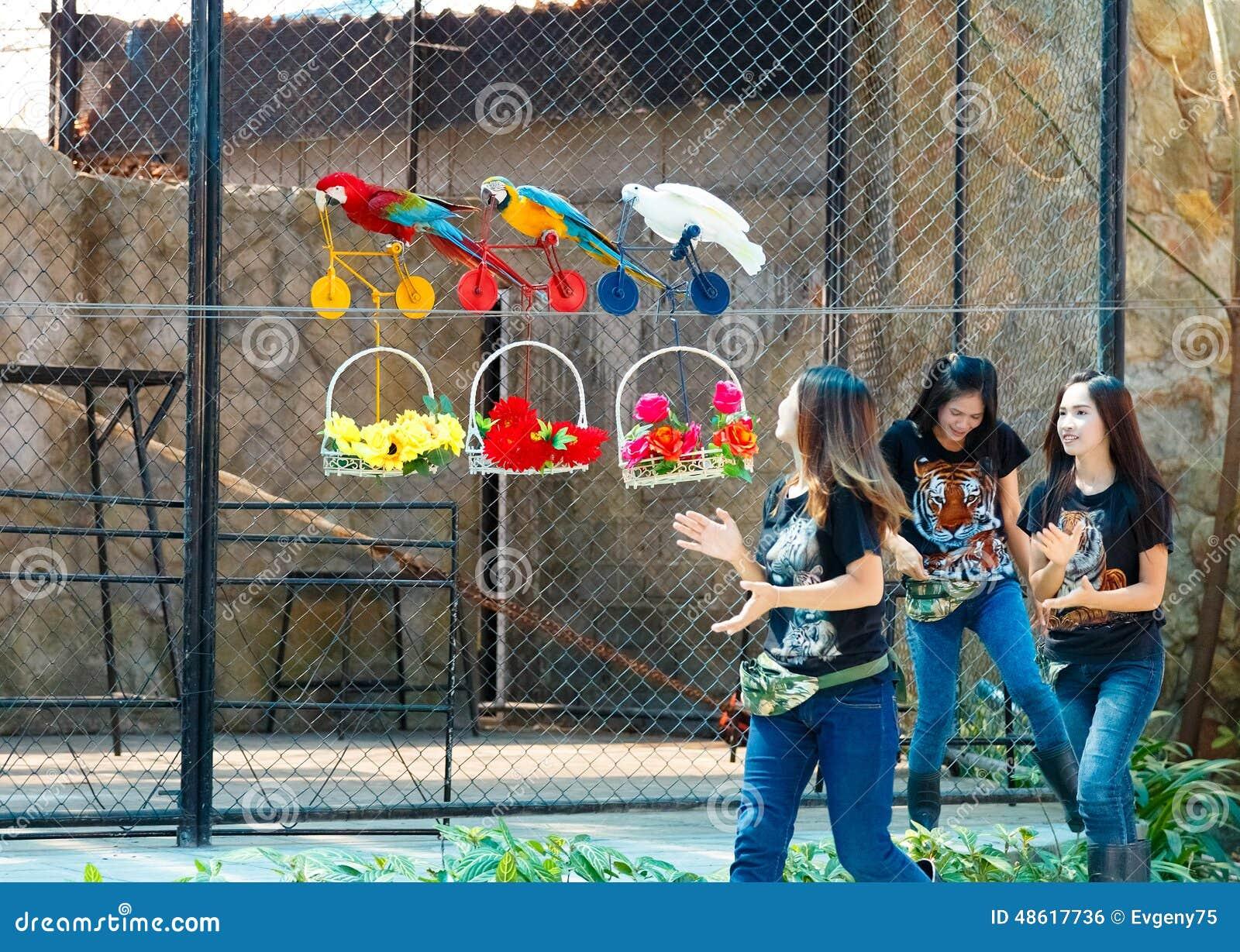 zoo map odense cum i halsen