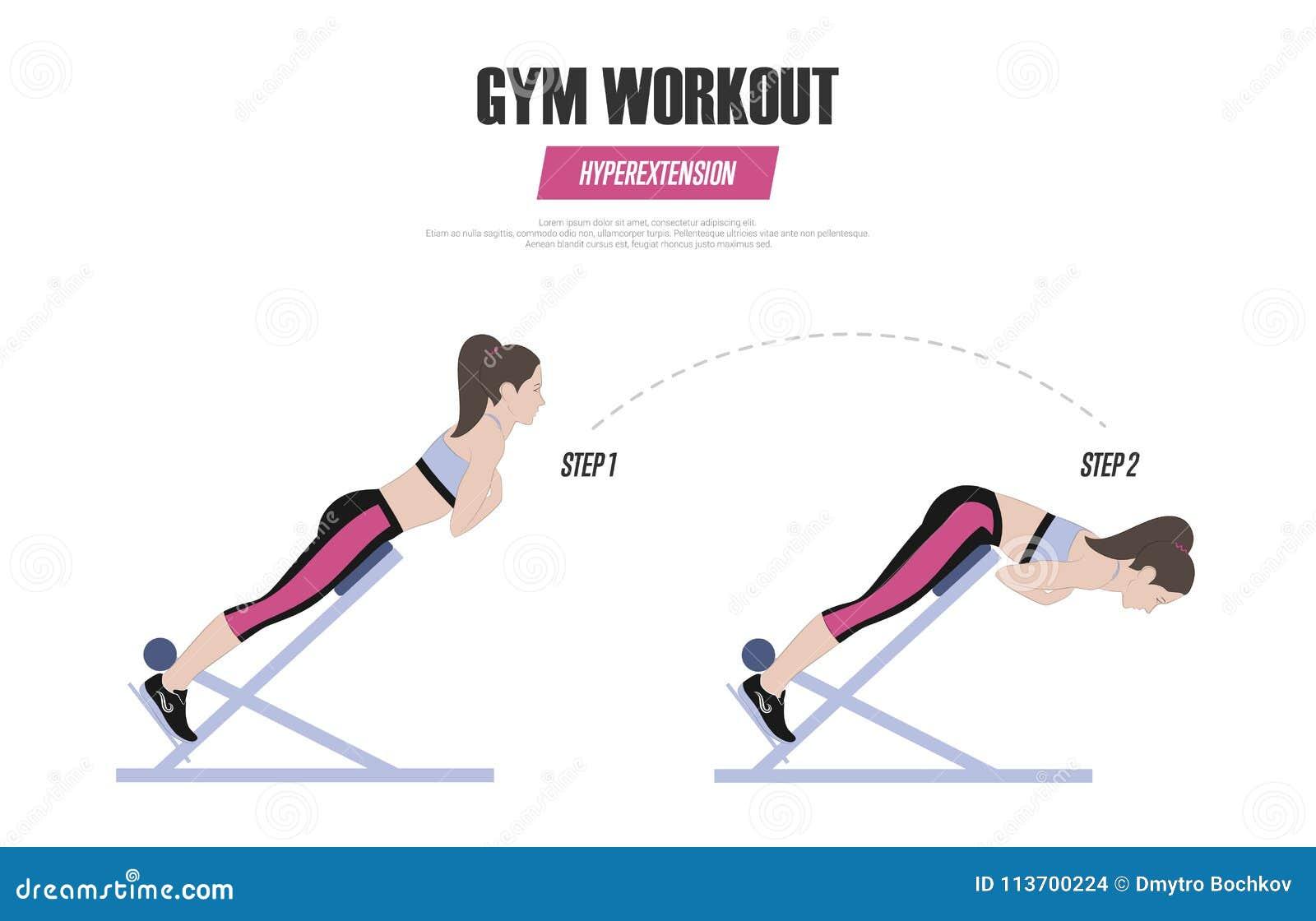 Exercices Sportifs Seance D Entrainement De Gymnase Hyperextension Sur La Chaise Romaine Illustration Un Vecteur