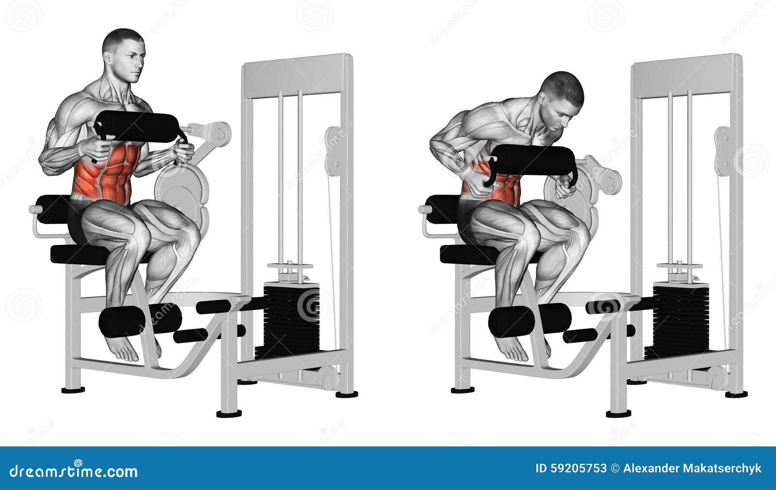 Exercising. Abdominal Crunch In AB Machine Stock