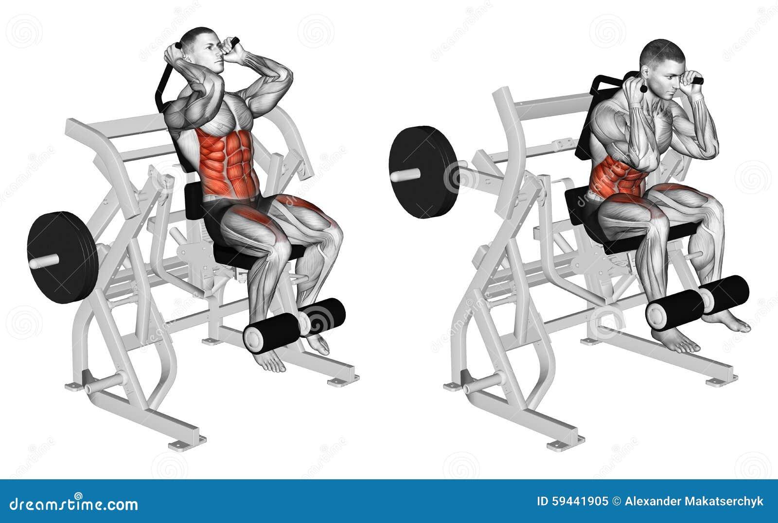 Exercising Cuerpo de doblez a los músculos abdominales y a las piernas