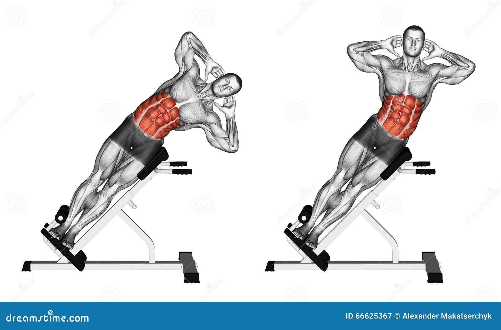 Exercising Curva lateral en banco