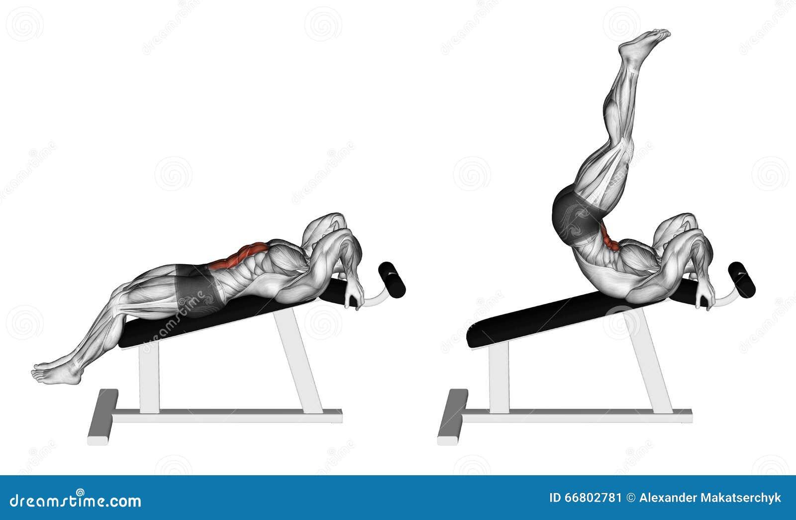 Exercising. Decline Reverse Crunch Stock Illustration ...