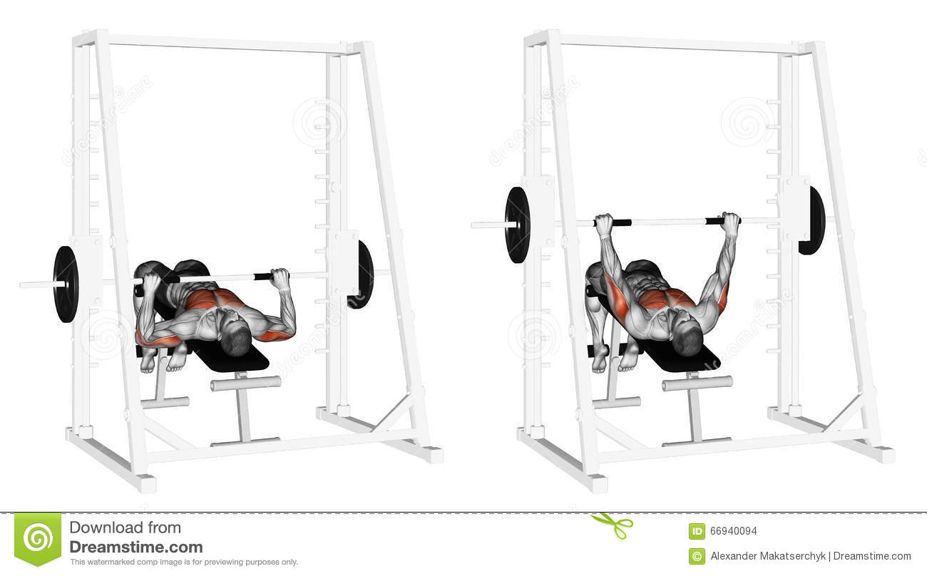 Cool Exercising Decline Smith Machine Bench Press Stock Ibusinesslaw Wood Chair Design Ideas Ibusinesslaworg
