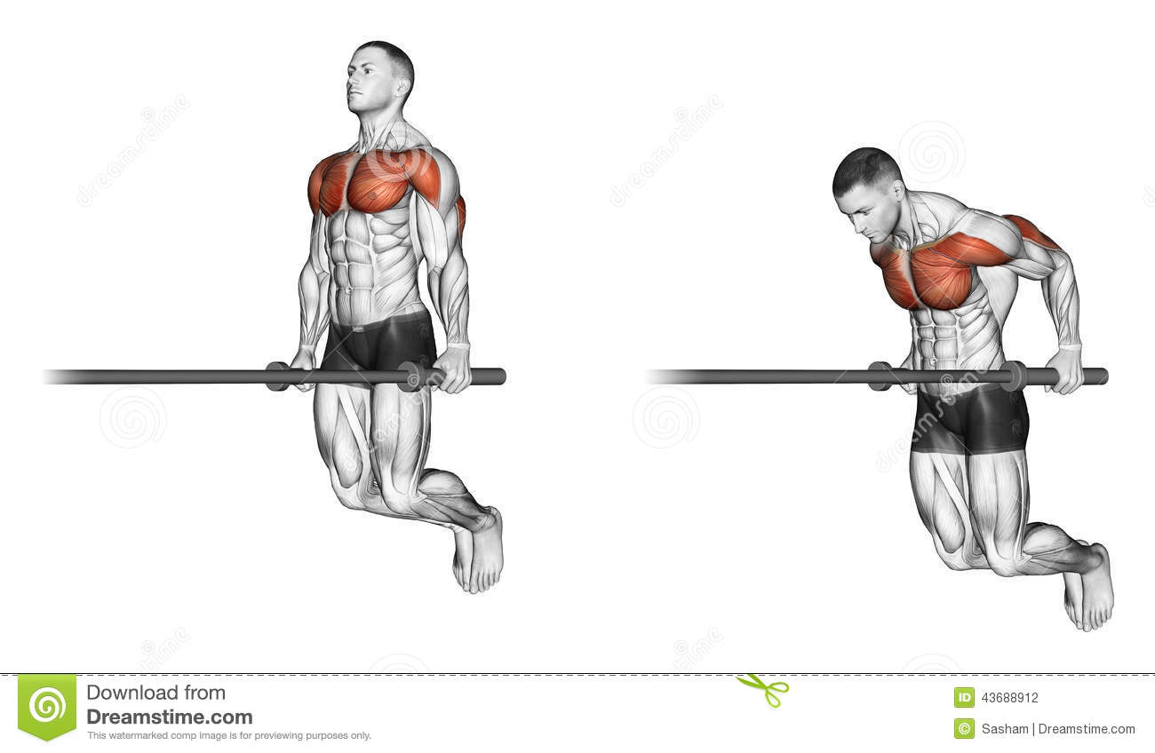 Crossfit Workouts Ring Dips
