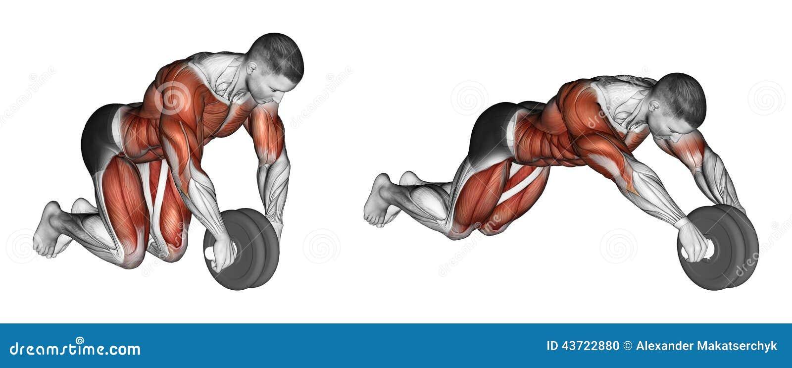 Exercising Het rechtmaken van simulatorwiel