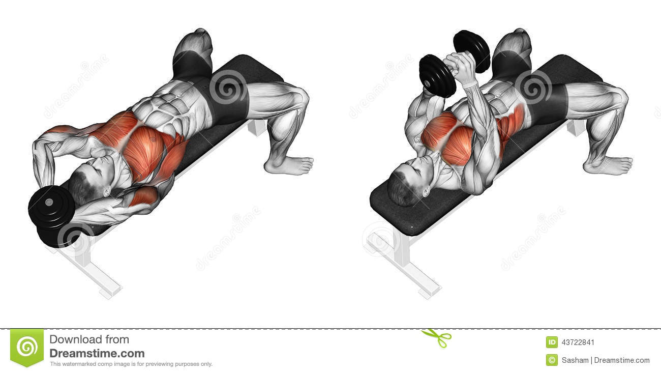 Exercising. Link Dumbbells From Behind The Head Stock ...