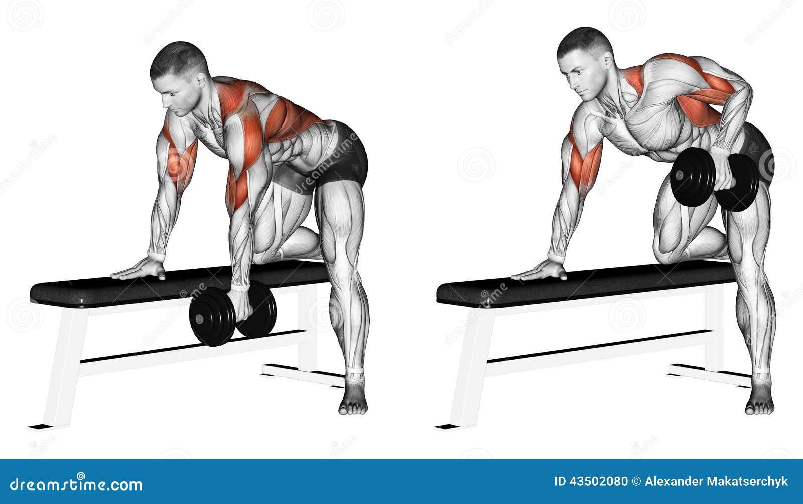 Exercising Pesa de gimnasia del final con una mano
