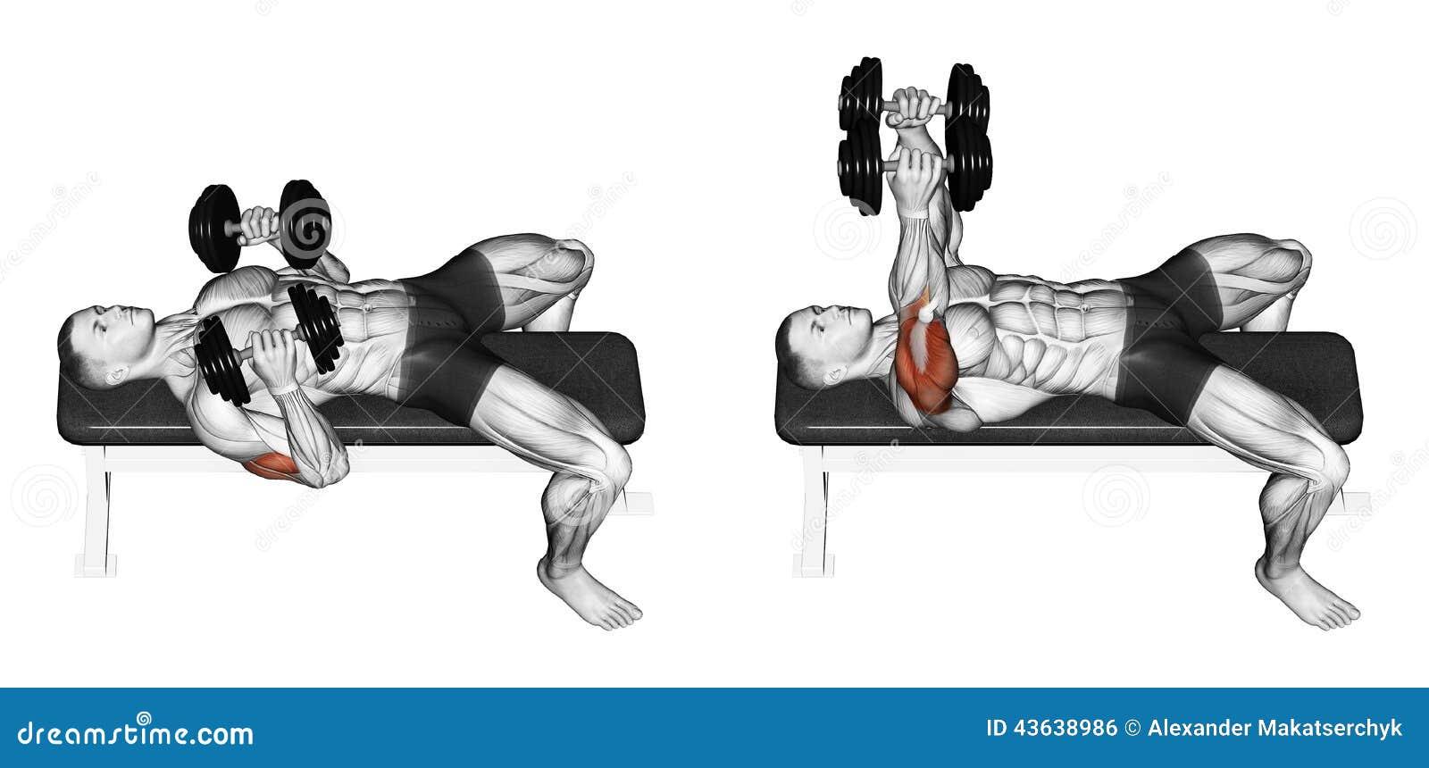 Exercising Prensa de banco de la pesa de gimnasia que se acuesta con sus codos presionados