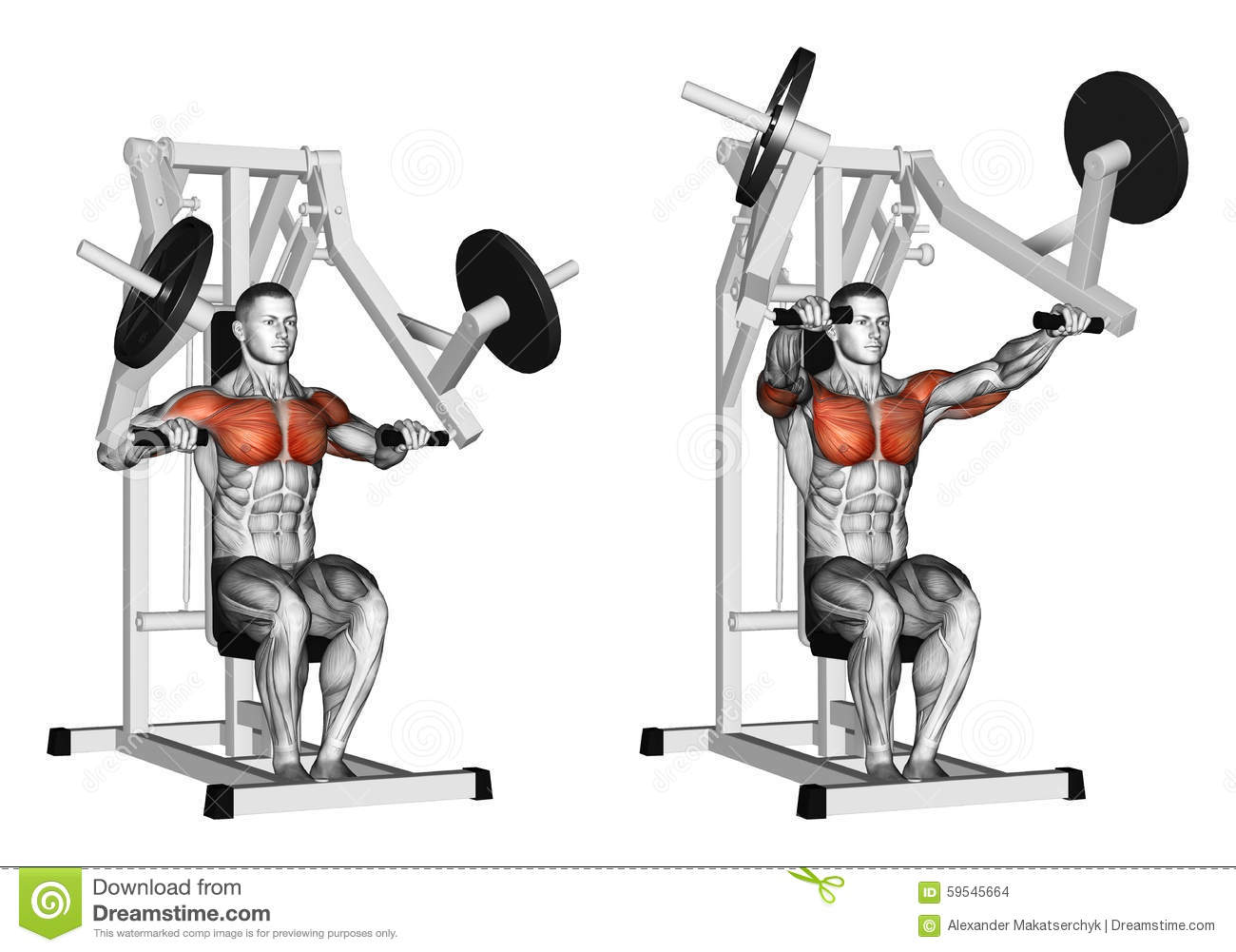 Hammer Strength Bench Presses Part - 15: Royalty-Free Illustration. Download Exercising. Press Hammer Strength ...