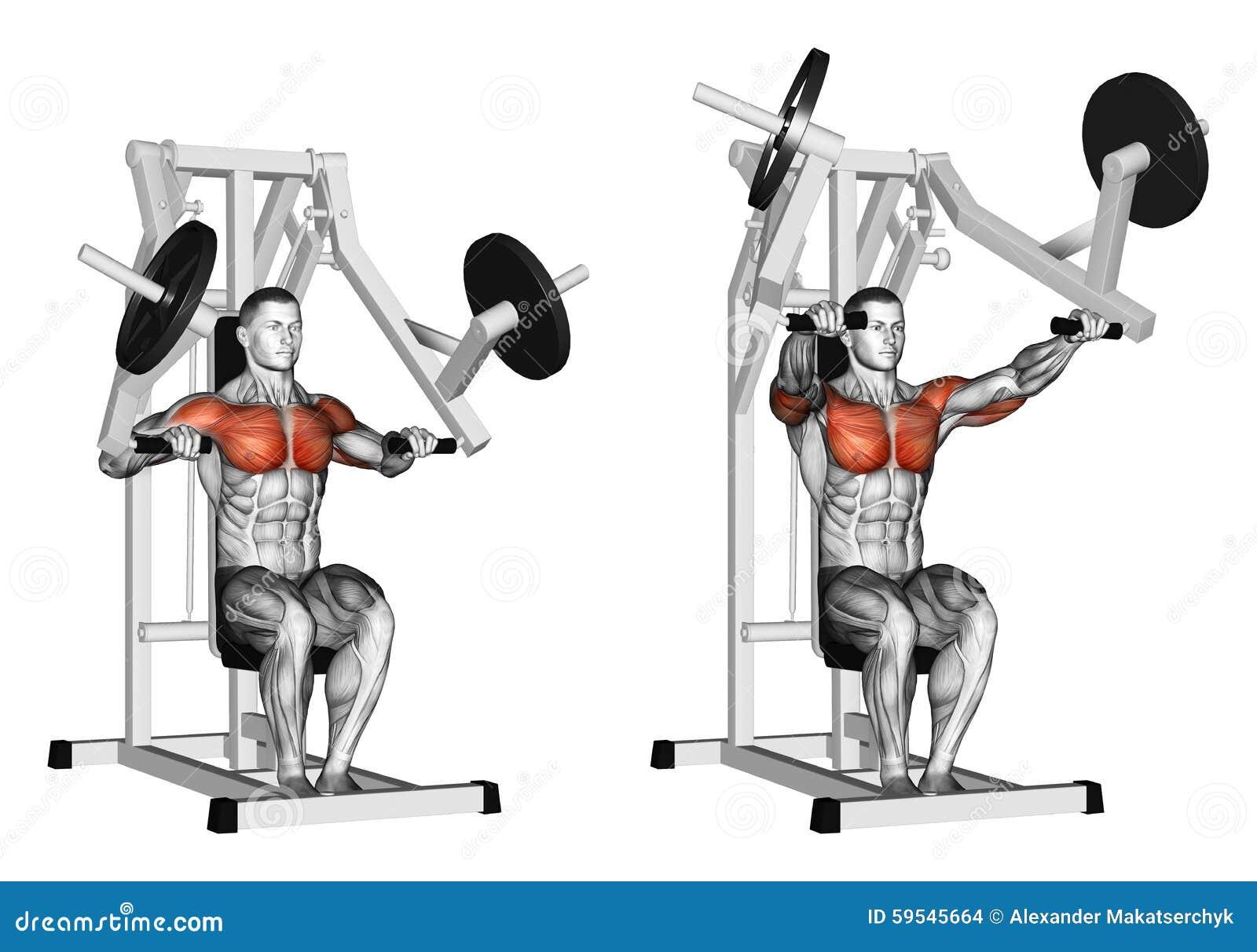 Exercising. Press Hammer Strength Gym Simulator Stock ...