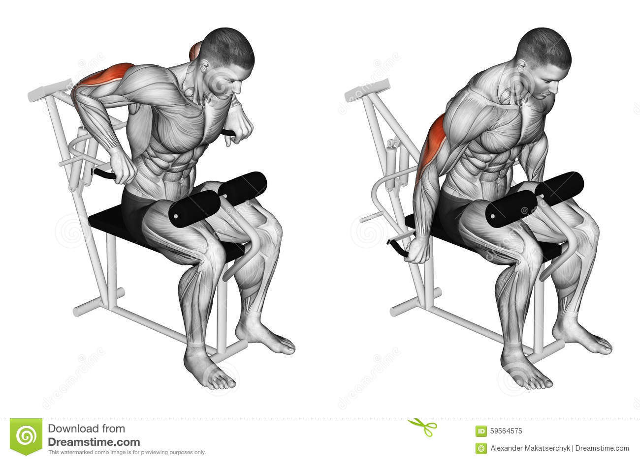 Exercising. Presses In Simulator On Triceps Muscle Stock ...