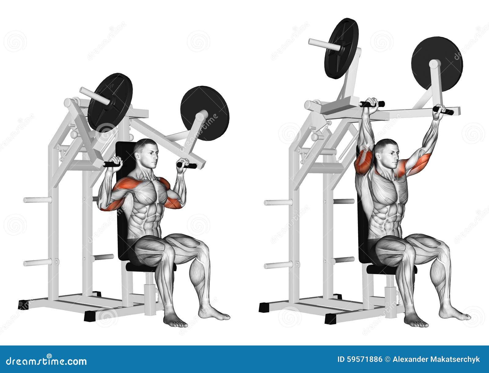 Exercising. Pull Hammer On Deltoids Stock Illustration ...