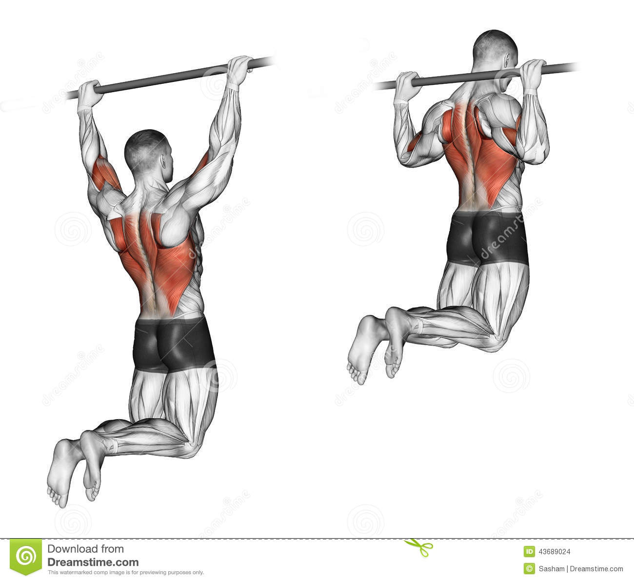 Exercising. Pull-ups On The Bar, Touching The Back Stock ...